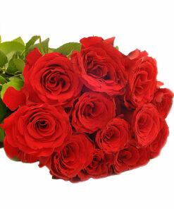 Šopek rdečih vrtnic