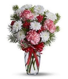 Bele marjetice in roza nageljni