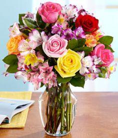 Vrtnice in alstromerije