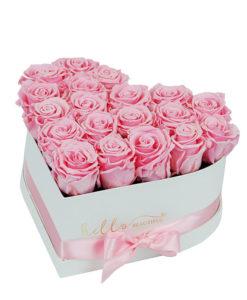 roza večne vrtnice v beli škatli v obliki srca