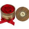 velika rdeča preparirana vrtnica v leseni škati z rdečo pentljo in pokrovom