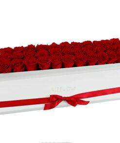 rdeče vrtnice v podolgovati beli škatli z rdečim trakcem