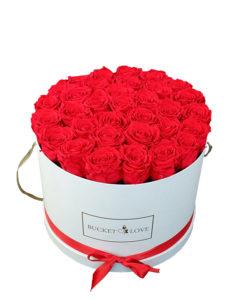 velik bucket of love z ogromno rdečimi vrtnicami znotraj