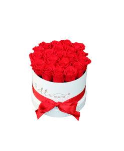 bela škatla hello beautiful s pentljo in rdečimi vrtnicami