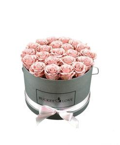 roza imenitne vrtnice v sivi škatli bucket of love