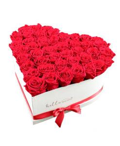 rdeče večne vrtnice v obliki srca