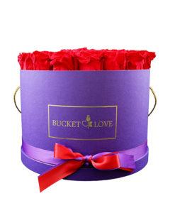 čelna slika vijoličastega lonca z rdečimi vrtnicami