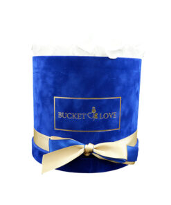 modra žametna škatla napolnjena z belimi vrtnicami