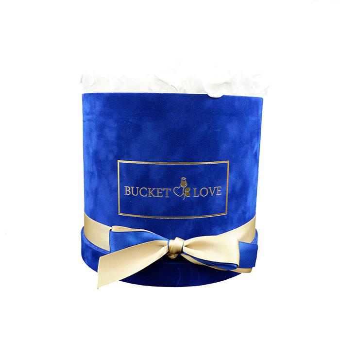 blue velvet box of white eternal roses