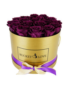 vijolične vrtnice v zlati škatli bucket of love