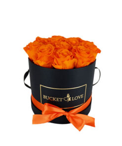 orange roses in a circled shape