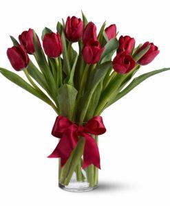 Rdeči tulipani