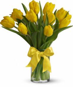 šopek tulipanov rumene barve z rumeno pentljo