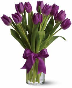 Vijolični tulipani