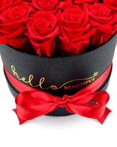 rdeče preparirane večne vrtnice