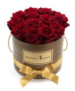 vrtnice v škatli Bucket of Love