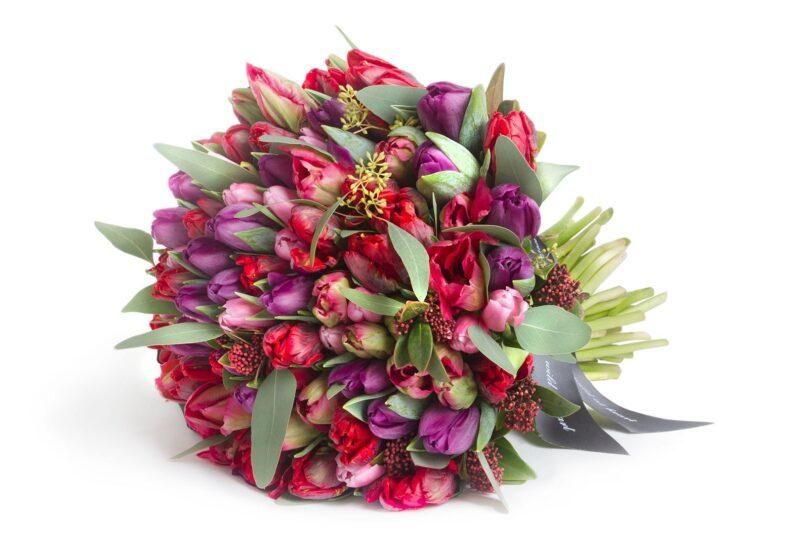 šopek tulipanov
